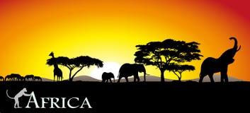 Savanna africano ilustração stock