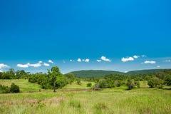 Savanna landscape at Khao yai National Park ,Thailand Stock Photography