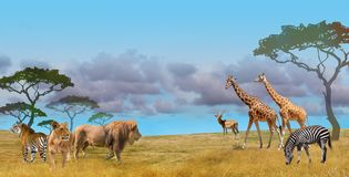 Free Savanna Predators And Prey Wild Animals Group Royalty Free Stock Image - 137378296