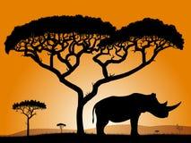 Savanna - rinoceronte. illustrazione di stock