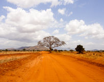 Savanna road. In Kenya. Africa Royalty Free Stock Images