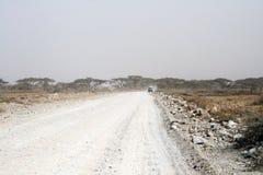 Savanna road Stock Image