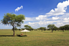 Savannah. A resting place in the wilderness, Grumeti Reserves, Tanzania Stock Photography