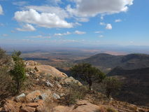 savannah afrykański Obrazy Royalty Free