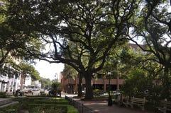 Savannah,August 8th:Park view from Savannah in Georgia USA Royalty Free Stock Photos