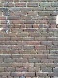 Savannah brick Royalty Free Stock Image