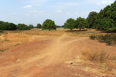 Savannah, Burkina Faso. Dry tropical savanna, Burkina Faso stock photos