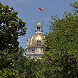 Savannah City Hall Stock Photo