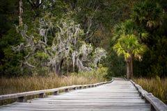 Savannah, Georgia marshlands Royalty Free Stock Photography