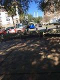 Savannah Georgia Square und Laufkatze Stockbilder