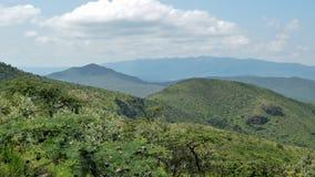 Savannah Grassland i monteringen Ole Sekut, Oloroka bergskedja, Rift Valley, Kenya Arkivbild