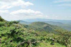 Savannah Grassland i monteringen Ole Sekut, Oloroka bergskedja, Rift Valley, Kenya Royaltyfria Foton