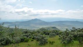 Savannah Grassland i monteringen Ole Sekut, Oloroka bergskedja, Rift Valley, Kenya Royaltyfria Bilder