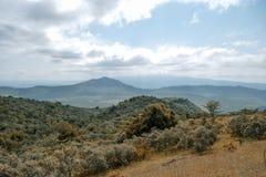 Savannah Grassland i monteringen Ole Sekut, Oloroka bergskedja, Rift Valley, Kenya Royaltyfri Fotografi