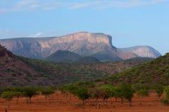 Savannah. The savannah landscape in kenya stock image