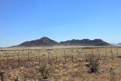 Savannah landscape in Namibia Royalty Free Stock Image