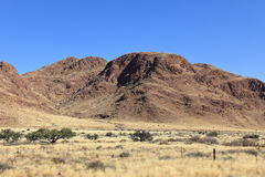Savannah landscape in Namibia. The Savannah landscape in Namibia stock images