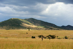 Savannah landscape in the National park of Kenya Royalty Free Stock Photography