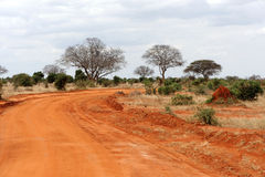 Savannah landscape in the National park of Kenya Royalty Free Stock Images