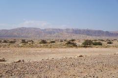 Savannah landscape. Near Eilat, south Israel Royalty Free Stock Image