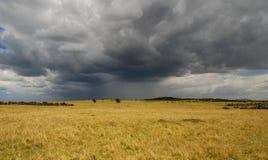 Savannah in Masai Mara National Reserve, Kenya royalty free stock photo