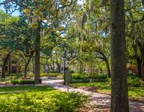 Savannah Park Under Oaks. One of the many beautiful square parks in Savannah, Georgia royalty free stock photos