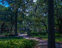 Savannah Park Under Oaks. One of the many beautiful square parks in Savannah, Georgia royalty free stock photography