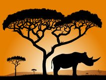 Savannah - rhino. Royalty Free Stock Photography