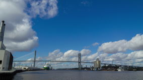 Savannah River en Georgia almacen de video