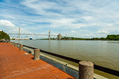 Savannah River. In Georgia with the Talmadge Memorial Bridge Stock Image
