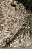 Savannah Staircase Fotografia Stock Libera da Diritti