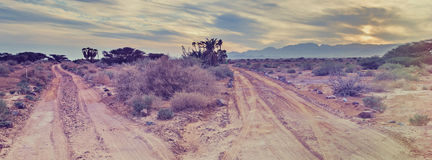 Savannah valley of Arava near Eilat - famous resort in Israel Stock Image