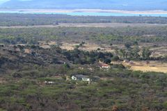 The Savannah in Zimbabwe. The Savannah and forest in Zimbabwe stock image