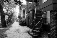 Savannahgata arkivbilder
