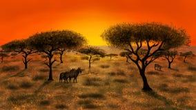 Savanne bei dem Sonnenuntergang stockfotos