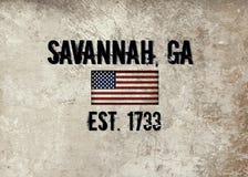 Savanne, Georgia lizenzfreie stockfotos