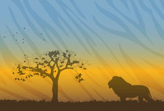 Savanne landscape with silhouette of lion Stock Photo