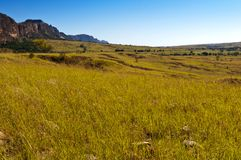 Savanne und Felsformationen madagaskar Stockbild