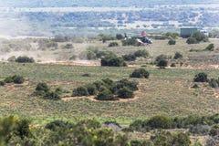 Savanne von Addo Elephant Park, Südafrika Lizenzfreies Stockfoto