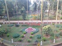 Savar dairy farm. Savar dhaka Bangladesh royalty free stock photography