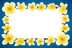 SAVE καρτών πρόσκλησης η ΗΜΕΡΟΜΗΝΊΑ με τη διακοσμητική διανυσματική απεικόνιση λουλουδιών απεικόνιση αποθεμάτων