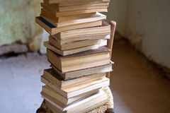 Save the books. The books, all the stories of the world Royalty Free Stock Photography