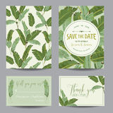 Save the Date Card. Tropical Banana Leaves. Wedding Card Stock Photography