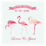 Save the Date - Wedding Card Stock Photos