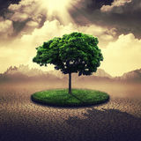 Save the Earth. Stock Images