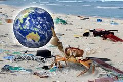 Save the Earth, Computer-generated crab by the beach is cleaned. Concept suitable for environmental protection themes. royalty free stock photos