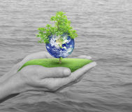 Save the earth concept, Elements of this image furnished by NASA Royalty Free Stock Photos