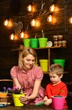 Save Earth concept. Mother and son transplanting flower in new pot to save Earth. Mother and child transplanting. Houseplant in black soil or dirt to save Earth stock photos