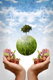 Save the earth by plantation Stock Photos