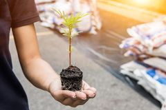 Save earth save life by plant the tree,. Environment concept royalty free stock image